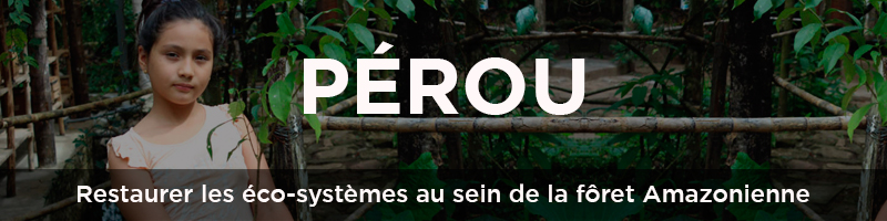 Perou Waxx ReforestAction